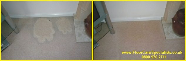 Professional Carpet Cleaning in Nottingham - www.FloorCareSpecialists.co.uk