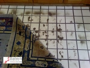 Rug Cleaning - www.BaileysFloorCare.co.uk